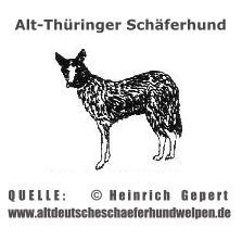 © www.altdeutscheschaeferhundwelpen.de