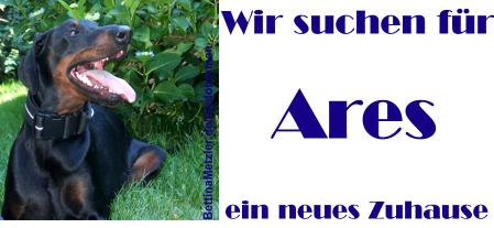 Ares sucht