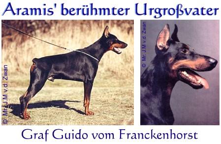 Graf Guido v. Frankenhorst