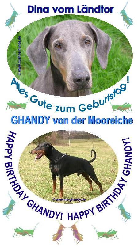 © www.huehnerhunde.de - www.he-ghandy.de