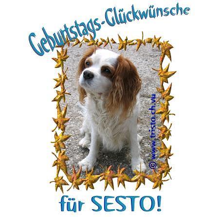 © www.tristo.ch.vu
