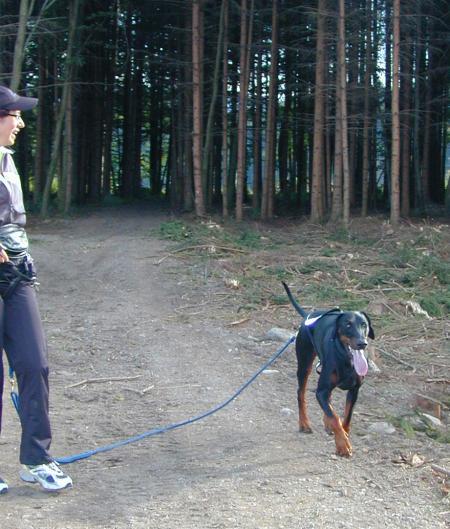 Jogging-First steps