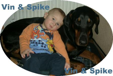 © www.dobermann-spike.de.tc - Vin und Spike