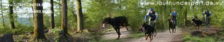 WeBLOG laufhundesport